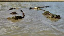 Due relitti in canal Salso - Mestre (abbandonati almeno dal 2007)