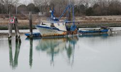 Motopesca abbandonato in Canal Salso (02/2012)