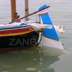 Topo Venessian armato al terzo - 2004